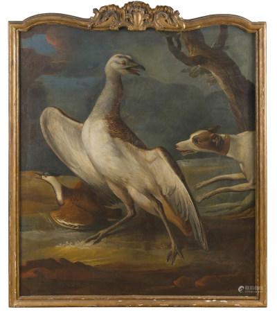 École ALLEMANDE du XVIIIe siècle, suiveur d'Aert SCHOUMAN  - Héron et oiseaux  - [...]