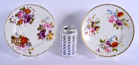 A PAIR OF EARLY 19TH CENTURY DERBY PORCELAIN PLATES painted with botanical sprays. 20 cm diameter.