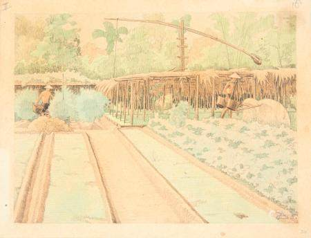 VIETNAM, Ecole de Gia Dinh, de 1926 à 1940  Phan Van Tan, promo 1935.  Potager annamite.  Aquar