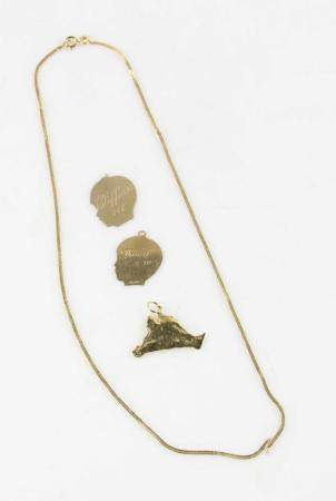 14k Gold Charms and Necklace