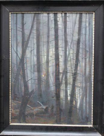Monogrammiste KH, huile forestière sur toile, encadrée, vers 1910. 61x45 cm