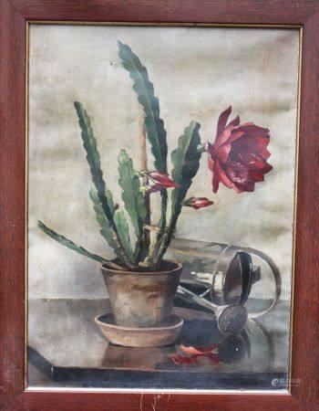 Artiste inconnu 1920, Nature morte de Cactus, huile sur toile, signée en bas à gauche, encadrée