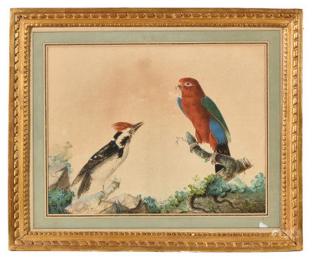 Auguste PELLETIER (actif entre 1816-1846).  - Oiseaux exotiques.  - Aquarelle et [...]