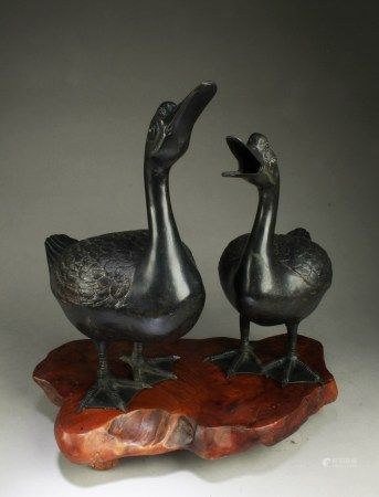 Two Bronze Duck Statues
