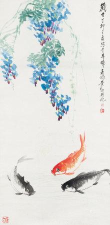 黃紅  紫藤金魚
