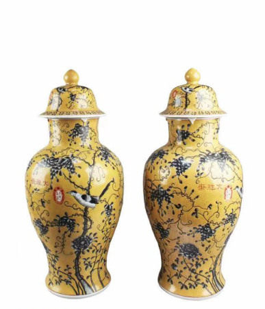 A Pair of Chinese Porcelain Vases
