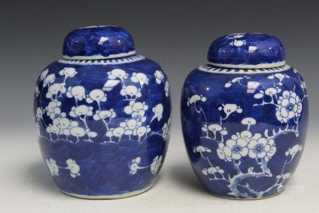 Two Chinese blue and white porcelain ginger jars with