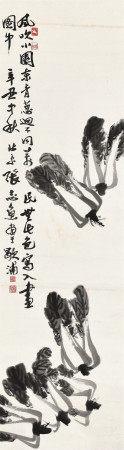 張志魚 白菜圖