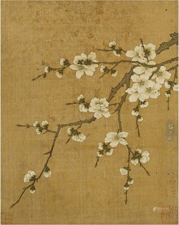 Anonymous (Previously attributed to Zhao Chang) 佚名(前傳趙昌)  | Plum Blossom 林檎花