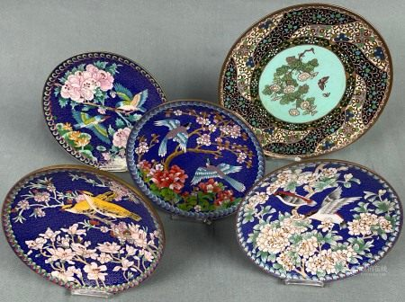 5 Cloisonne Teller. Wohl Japan alt / antik.