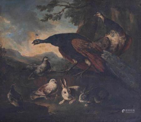 MELCHIOR DE HONDECOETER (1636-1695)