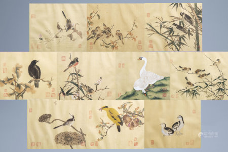 Chinese school, ink and colours on silk, 19th/20th C.: Ten paintings of birds between blossom branches