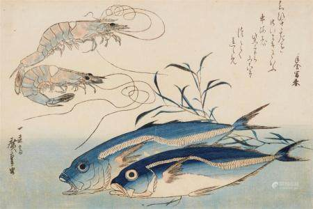 Ôban, yoko-e. Large fish series. Horse mackerel (aji) and prawns (ebi) with sea weed. Poem. Signed: Ichiryûsai Hiroshige ga. Published by Nishimuraya Yohachi. Ca. 1832. Later edn. without seals and stamps. Good impression, colours slightly faded,