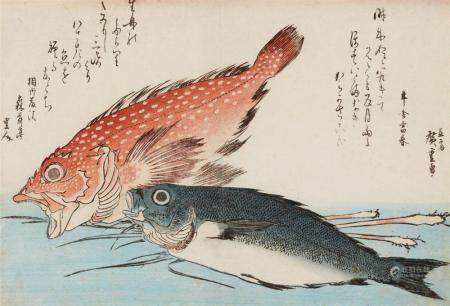 Ôban, yoko-e. Large fish series. Scorpionfish (kasago) and snapper (isaki) with ginger shoots. Poems. Signed: (Ichi)ryûsai Hiroshige ga. Published by Nishimuraya Yohachi. Ca. 1832. Later edn. without seals and stamps. Fair impression, good colours