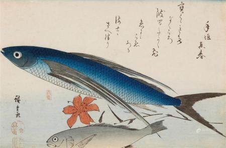 Ôban, yoko-e. Second large fish series. Flying fish (tobiuo) and white croaker (ishimochi) with a lily. Poem. Signed: Hiroshige ga. Seal: Ichiryûsai. Publisher: Maruya Jinpachi. Ca. 1840-1842. Good impression and colours, soiled along margins, low