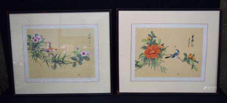A pair of framed Chinese watercolours depicting birds in foliage. 41 x 30cm (2)