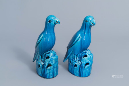 A pair of Chinese turquoise glazed models of parrots, 19th C.