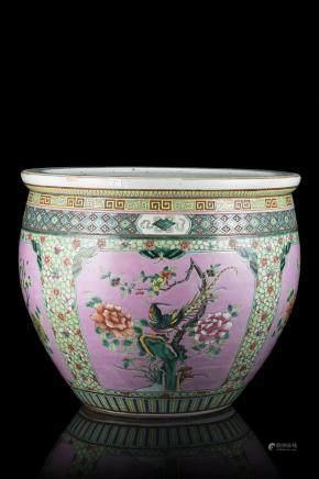 中國 二十世紀 粉地五彩花鳥紋魚缸