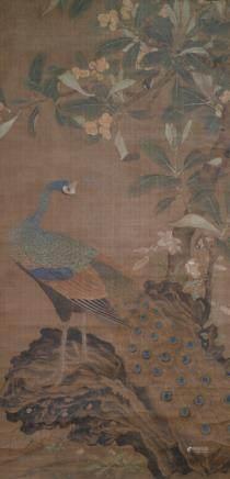 Peacock under a Mispel Tree