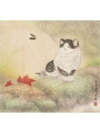 玉蘭 貓蝶