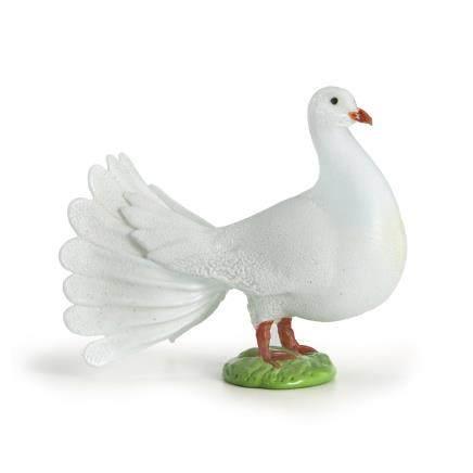 皮諾‧席諾瑞託 鴿