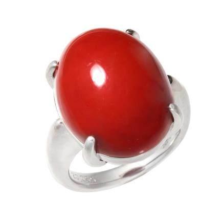 紅珊瑚 鉑金戒指
