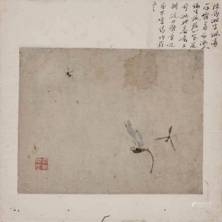 陈筠湘昆虫图