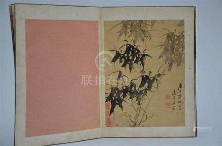 Chinese album with eight drawings 'bamboo' (28x37cm)