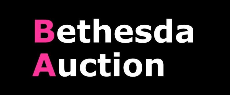 Bethesda Auction