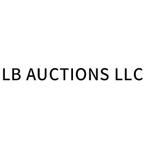 LB AUCTIONS LLC