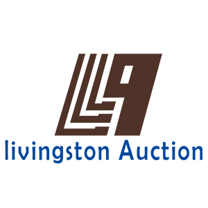 Livingston Auction