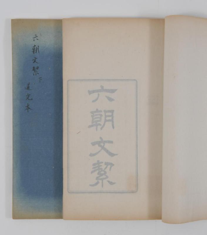 2 VOLUME BOOK OF LIU CHAO WEN JIE